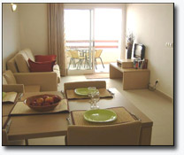 playa flamenca holiday rental